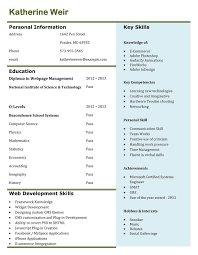 resume examples for job best professional resume templates professional resume samples