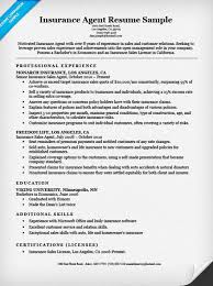 Sample Of Resume Skills And Abilities by Insurance Agent Resume Sample Resume Companion