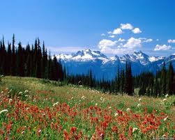 அழகு மலைகளின் காட்சிகள் சில.....02 Images?q=tbn:ANd9GcS8b212FHQnYf7RuNosIpZDffaCM4vjzSM3GZXRBXa9W4b4fjxMmw