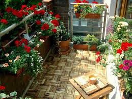 18 balcony gardening tips to follow before setting up a balcony