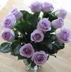 ดอกกุหลาบสีม่วง ชุดที่ 4 (