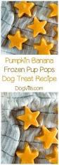 best 25 dog bones ideas on pinterest puppy treats easy