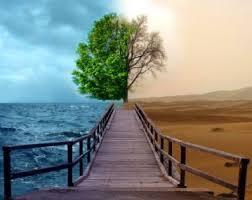 O que é Sustentabilidade ambiental ? Images?q=tbn:ANd9GcSACqjuwAgPmj9oUDzI69B0od8EmAVeQ5JTkcW0zGbsP81N3CRJ