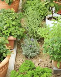 garden design garden design with edible container garden ideas
