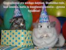 Juokingi gimtadienio atvirukai
