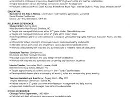 resume summary examples for students absolutely design example of resume summary 15 how to write a download example of resume summary