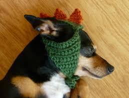 Dinosaur Halloween Costumes Dinosaur Dog Hat Dino Dog Costume Pet Clothes Dog Gift