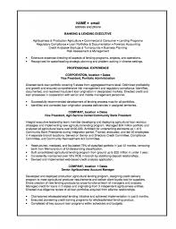 Sample Investment Banking Analyst Resume Entry Level Investment Banking Resume Free Resume Example And