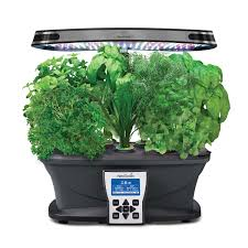 best herb growing kits for the kitchen houseplant