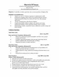 Resume Headline Examples by Basic Job Resume Examples Format Download Pdf Professional 93