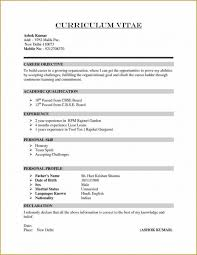 Summary Of Qualifications Sample Resume by Resume Summary Of Qualification Brian Wiita Sample Elementary