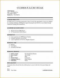 Resume Summary Examples Customer Service by Resume Summary Of Qualification Brian Wiita Sample Elementary