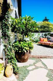 1525 best backyard riad images on pinterest garden ideas