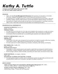 it support cv template  chronological resume sample accounting