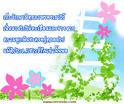 Yent@ 4 Hompy jomkoong