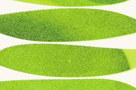 Pantone 2017 by The 2017 Color Of The Year Pantone Greenery Household Art