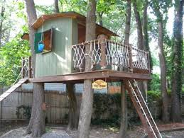 Home Designs Pictures Best 25 Tree House Designs Ideas On Pinterest Beautiful Tree