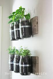 wall mounted mason planters for those who have a lot of indoor