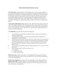Modern times film analysis essay Dow ipnodns ruFree Essay Example   ipnodns ru Tips on College Essays About Literature