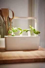 garden design garden design with most stylish indoor herb gardens