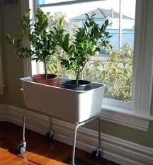 modern planter pots plant emejing indoor containers images trends