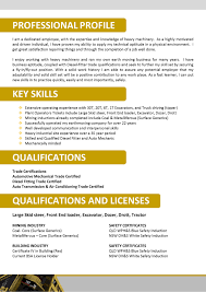 Professional Profile On Resume What Should Be Key Skills In Resume Free Resume Example And