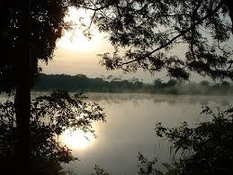 Ivinhema River