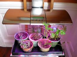 the fantastic world of led grow lights garden rant