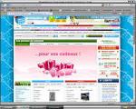 Etude de 3 sites d'achats en ligne (rueducommerce, priceminister ...