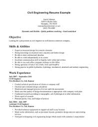 Blank CV Template Example   doc pdf free       pages