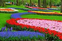 فصل الربيع Images?q=tbn:ANd9GcSI0PgCfxkN7O_zKC-IHyNoSnjOk2Zy4T9bqBYjFGt7BJKrigZA8ohTsB_l