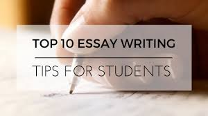 Essay Writing Tips For Sbi Po Exam   Essay Sample Essay Exam Instructions General Writing Tips