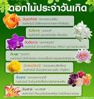 ดอกไม้: ดอกไม้ประจำวันเกิด