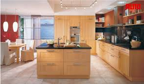 Modern Kitchen Designs With Island by Types Of Kitchens Alno