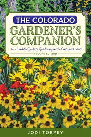 companion vegetable garden layout a crash course in colorado gardening 5280