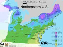 Big Map Of The United States by North East Us Plant Hardiness Zone Map U2022 Mapsof Net
