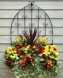 الزهور ونباتات الزينة, Images?q=tbn:ANd9GcSJ1A0bQIXX6AB0uJnOkyuaPK0Vgm9soSx4XvPJzXCQ0bAXOGQ