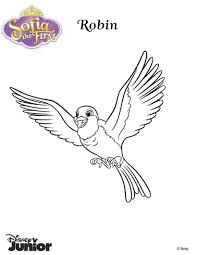 whatnaught the squirrel coloring pages hellokids com