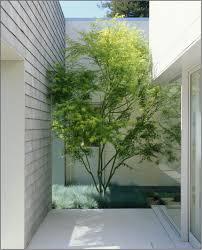 Home Design Ebensburg Pa by Modern Indoor Garden Home Design Home Design And Style
