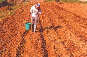 image of a farmer spraying fertilizer on land, borrowed from t2.gstatic.com