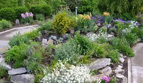 100 small shade garden the corner shade garden growing the