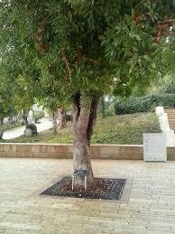 Yad Vashem   Wikipedia