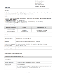 CV Writing Oman  A NEW CV from a Professional     Years Experience  Domainlives Example sales resume for sales executive