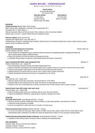 What Is A Resume Used For  hassan choughari what type of resume cv
