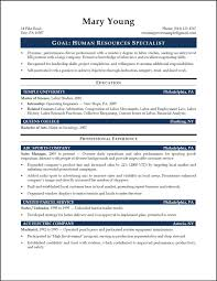 Director Of It Resume Examples by Entry Level Resume Sample Template Templates Word Entry Level R