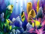 Wallpapers Backgrounds - Natures Aquarium Wallpaper