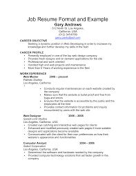 Resume   Template Basic Objectives For Resumes General With          sample job