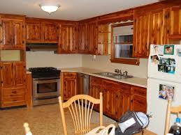 Refinishing Kitchen Cabinets Kitchen Refinish Kitchen Cabinets And 45 39 Diy Kitchen Cabinets