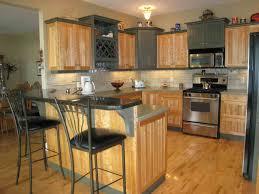 popular kitchen themes kitchen decor u2014 luxury homes new kitchen