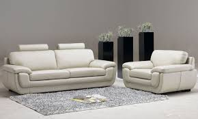 Decorative Home by Leather Living Room Furniture With Three Decorative Plants House